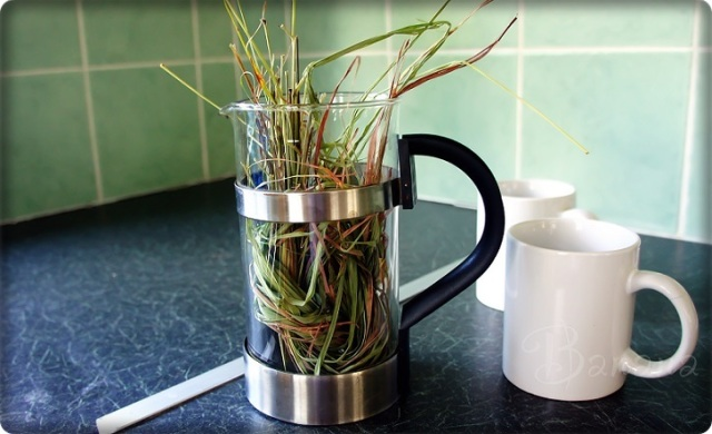 Lemongrass 'tea'